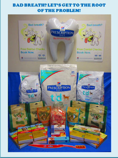 Gordon Vet Dental Month Prize