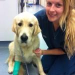 Henry and Nurse Amy