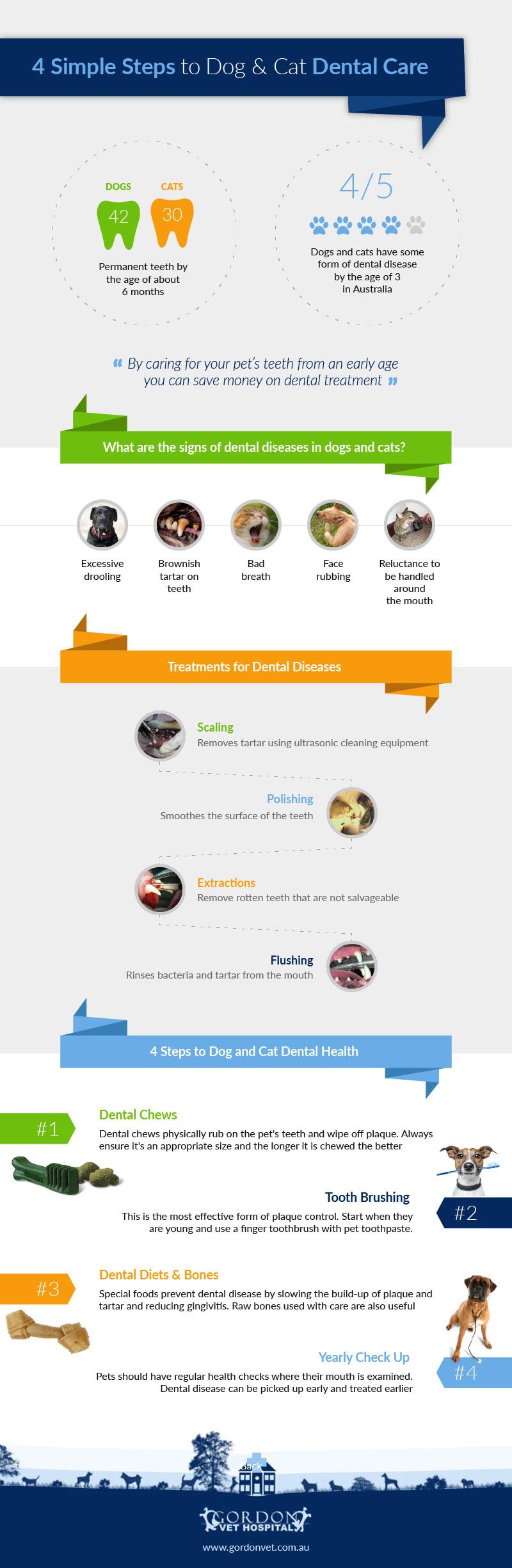 4 Simple Steps to Dog & Cat Dental Care